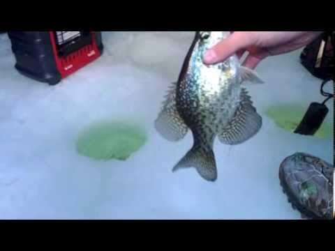 Ice fishing  crappies (Minnesota)