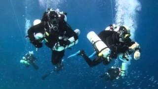 Encuentran restos del ejército egipcio del éxodo en el Mar Rojo