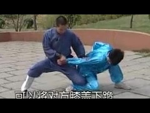 Shaolin Big Flood Kong fu (da hong quan): typical techniques and combat applications Image 1