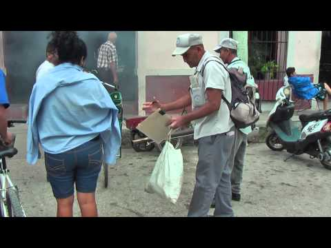In Cuba insecticide DDD is sprayed in homes against the Dengue mosquitoes