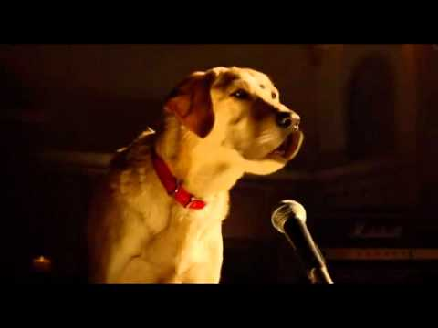 Bob Marley And Me Beverly Hills Chihuahua 3 video