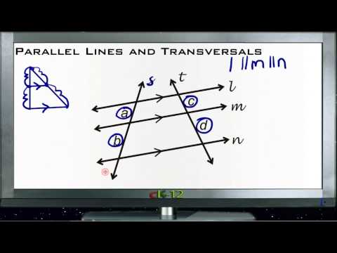 Parallel Lines and Transversals Principles - Basic