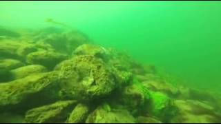 Diving in Columbia River at Tri-Cities Washington