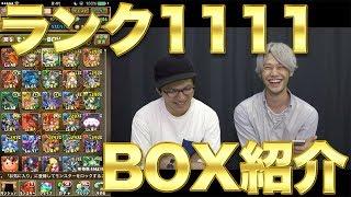 【パズドラ】LUKAのBOX紹介 ランク1111