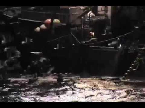 F/V Ocean Dream Squid Video