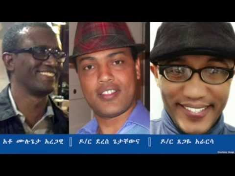 VOA Interview With Mulugeta Aregawi, Dr. Derese Getachew & Dr. Tsegaye Ararsa