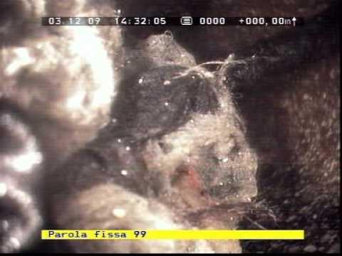 Tubazione ostruita da paletto messa  aterra