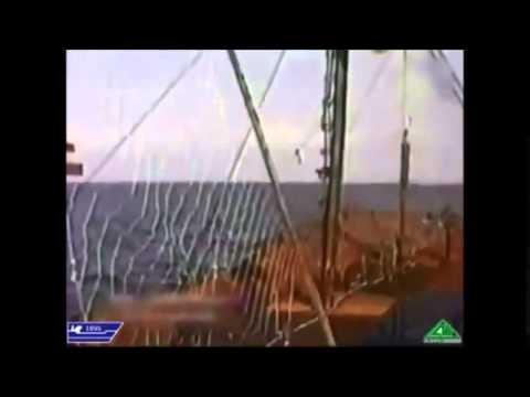 Sức mạnh hải quân Việt Nam 2015