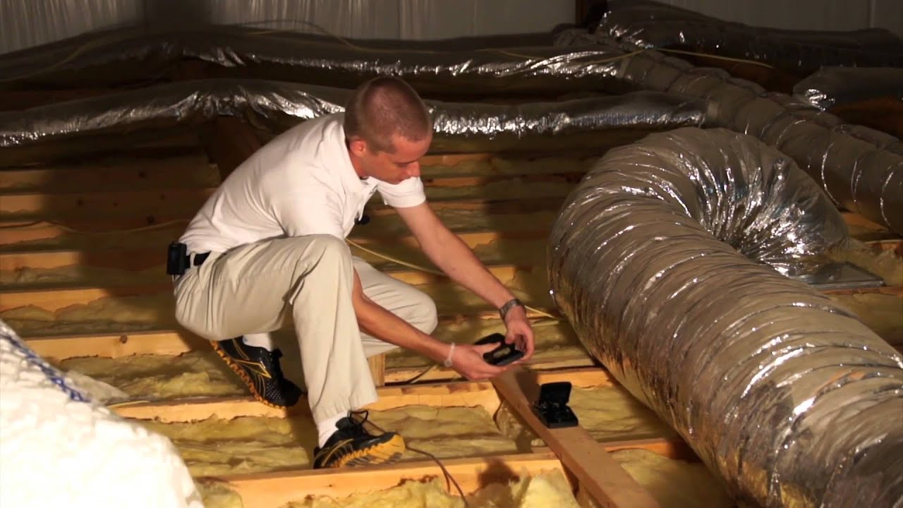 How To Get Rid Of Rodents In The Attic Pest Products