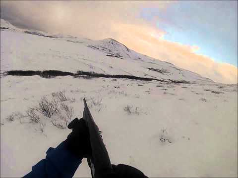 Ptarmigan hunting in Iceland