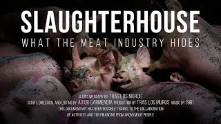 Slaughterhouse. What the meat industry hides. // Documentary film.
