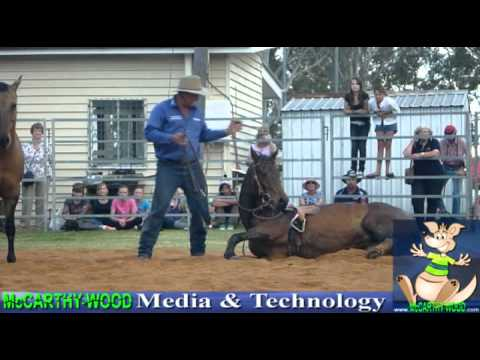 Amazing Horse And Bull Ridding With Funny Tricks - Guy Mclean video