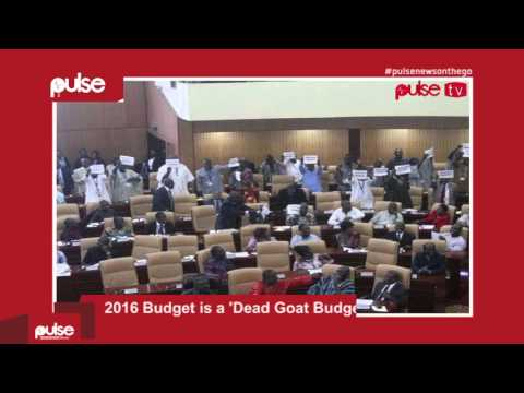 Pulse News On The Go - 13th November, 2015