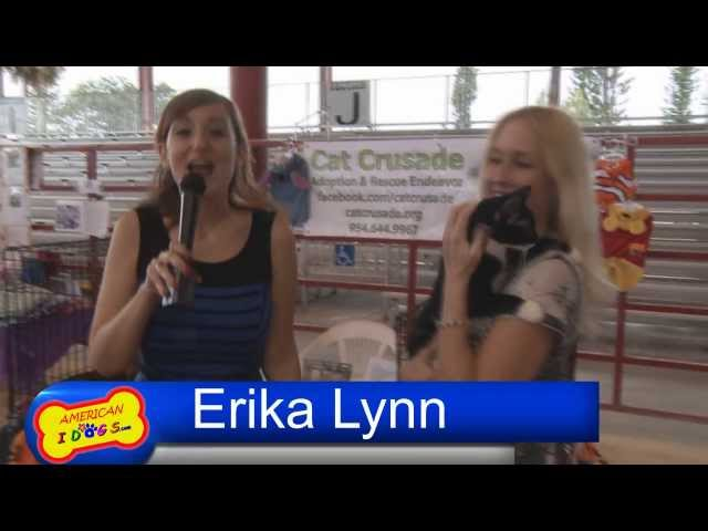 Interview with Suzanne Williams from Cat crusade rescue at American Idogs Bark to the Future show