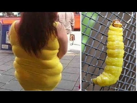 Top Pictures Of Funny Coincidence 2016 Funny Picture Video Fail Compilation