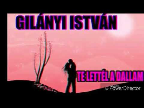 Gilányi István - Te lettél a dallam  (SoundOhCan HandsUp Remix)