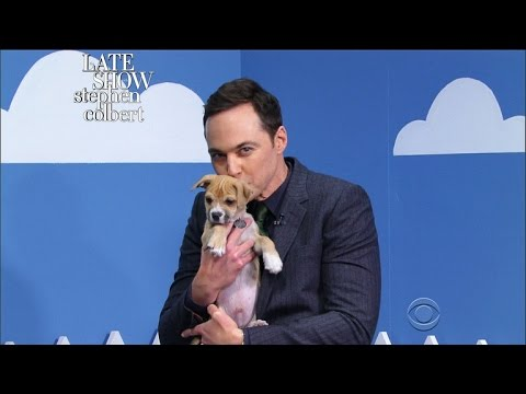 The Late Show 'Rescue Dog Rescue' With Jim Parsons