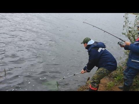 фидер на реке вятке видео