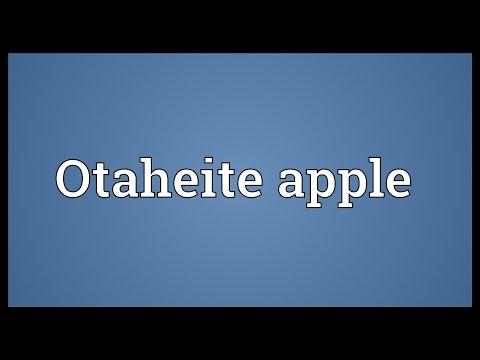 Header of Otaheite