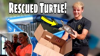 SURPRISING Paul Cuffaro with RESCUED Turtle!!