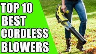 Top 10 Best Cordless Blowers 2019
