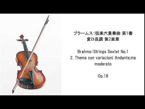 Classical Music Selection - Chamber music (BGM for studying and concentration)