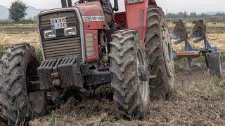 Sağlamlıkta Bu Traktör Rakipsiz - Massey Ferguson 3.105D