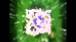 Watch Al Jarreau Hark The Herald Angels Sing video