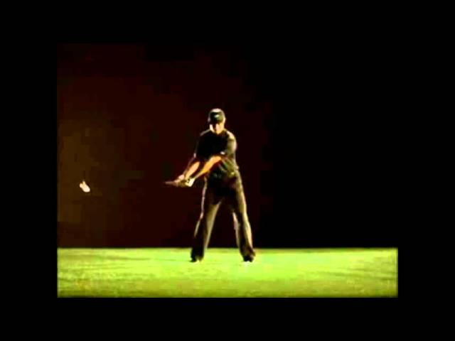 Tiger Woods / Picture Perfect !