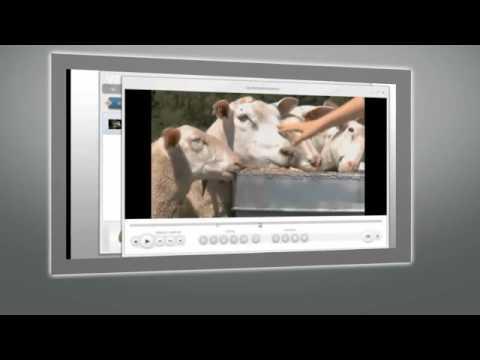 Videolarınızı Dönüştürürken Düzenlemeler Yapın
