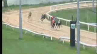 IGB - Gate Childcare  A3   22/04/2019 Race 3 - Youghal