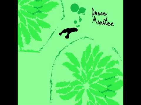 Animal Collective - Danse Manatee [Full Album]
