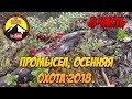 Медведь кого то сожрал  /Промысел 2018 👉8 часть/