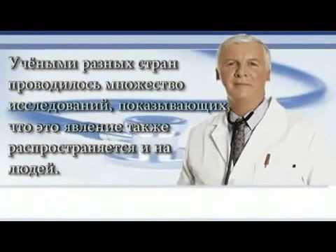 russkie-ochen-pyanie-porno