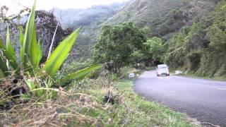 Adventures Bandipur and Ooty Road Trip - Trailer
