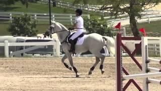 Donna Miller & ArdCelticArt Stadium Kentucky Classique Horse Trials September 2013