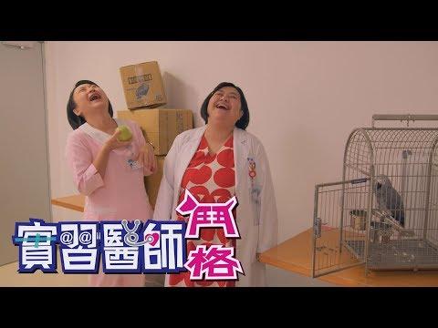 台劇-實習醫師鬥格-EP 342