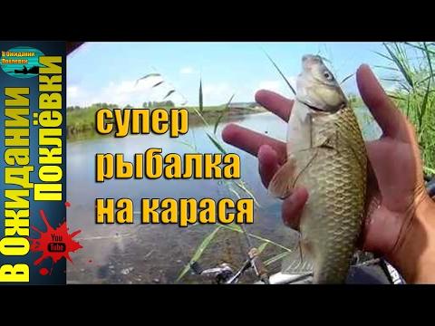 как ловить на поплавок на озере карася