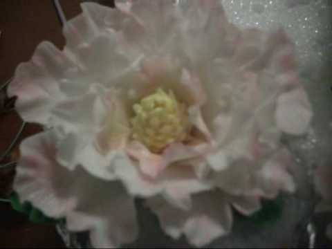 Cake Decorating How To Make Daisies : Gumpaste Flowers. Peonies & Roses - YouTube