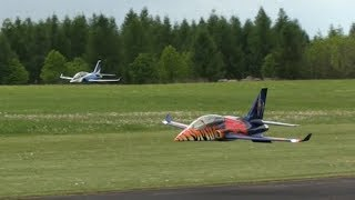RC Viper Jets, Formation Flight of Two - Modelpark Suché 2017
