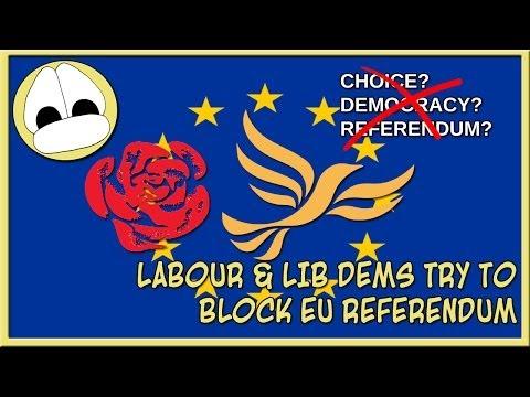 LABOUR & LIB DEMS TRY TO BLOCK EU REFERENDUM