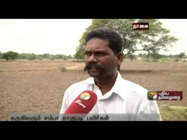 Thiruppugazhur farmers request for water supply
