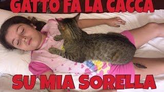 download lagu Gatto Fa La Cacca Su Mia Sorella - Scherzo gratis