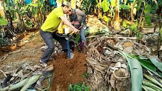Công việc kiểm tiền mỗi ngày của người nông dân