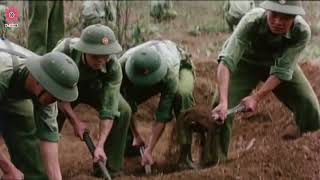 Best Vietnam War Movies | The Smell of Grass Burning | 7.9 IMDb | English & Spanish Subtitles