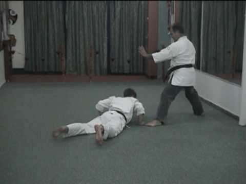 Okinawa Karate Techniques for Self Defence by Kapsalis Apostolos.mpg Image 1