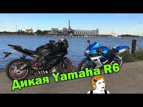 Дикая Yamaha R6 Тестдрайв Спортбайка