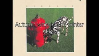 Vídeo 27 de Kid Down