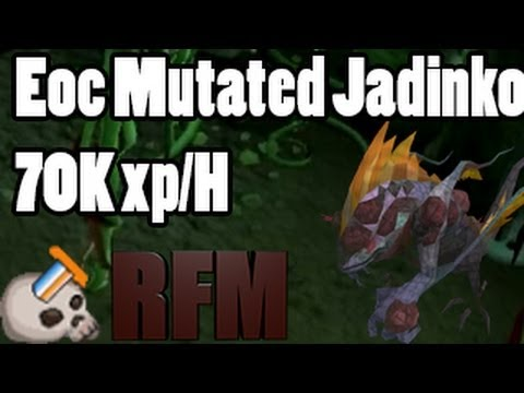 EoC Mutated Jadinko's Slayer Guide ~70K xp/hour ! + 300k Combat xp/h