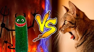 download lagu So Funny & Crazy Cats Fails Compilation, Try Not gratis